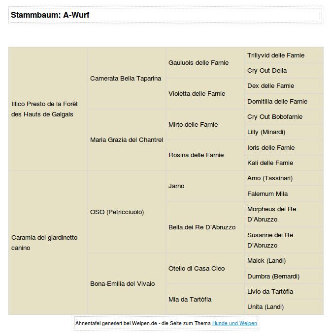Stammbaum-A